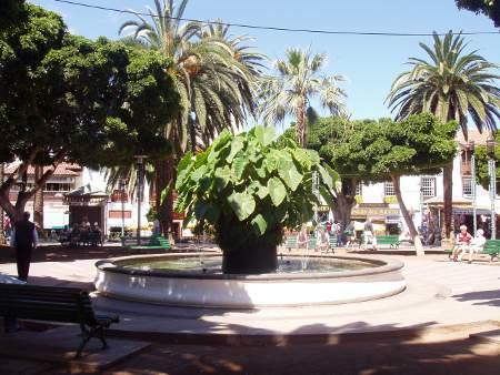 Brunnen, Plaza del Charco in Puerto de la Cruz