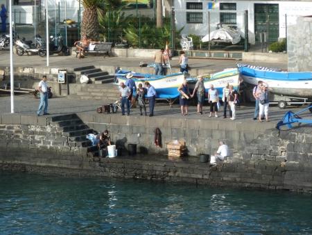 Fisch im Hafen